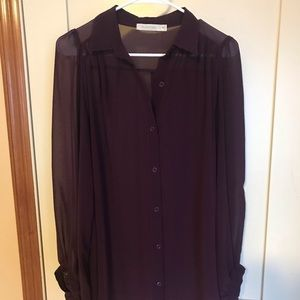 Shear Purple Blouse